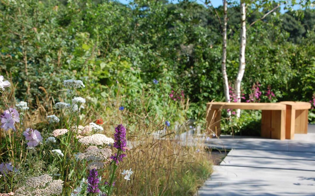 RHS Young Designer of the Year 2016