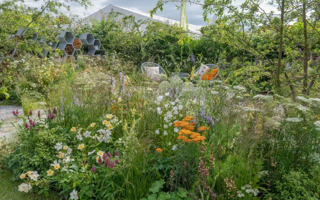 Plant List: Urban Pollinator Garden at RHS Hampton Court