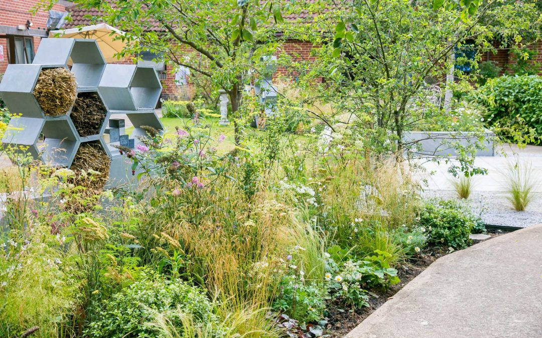 Urban Pollinator Garden rehomed at Cransley Hospice